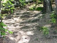 Элемент велотрассы - падучий спуск