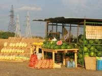 Придорожная торговля на Володарском шоссе - август 2014