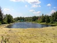 Большой пруд в деревне Жуково
